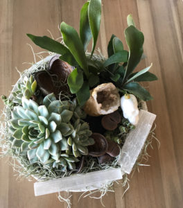 Close up of a succulent arrangement with quartz crystals by La Petite Gardenia.