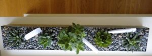 Close up of a succulent trough by La Petite Gardenia.